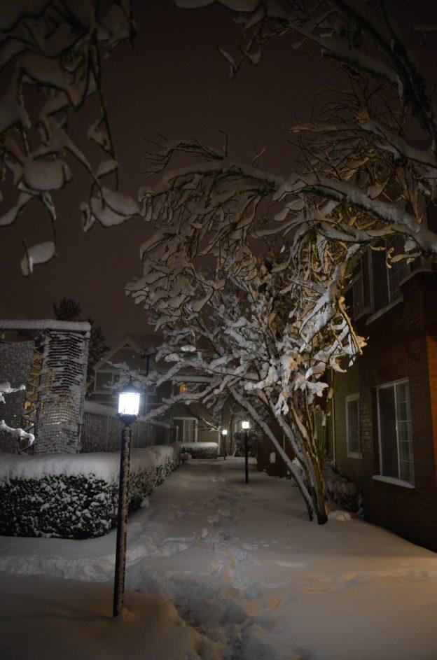 オレゴン 大雪