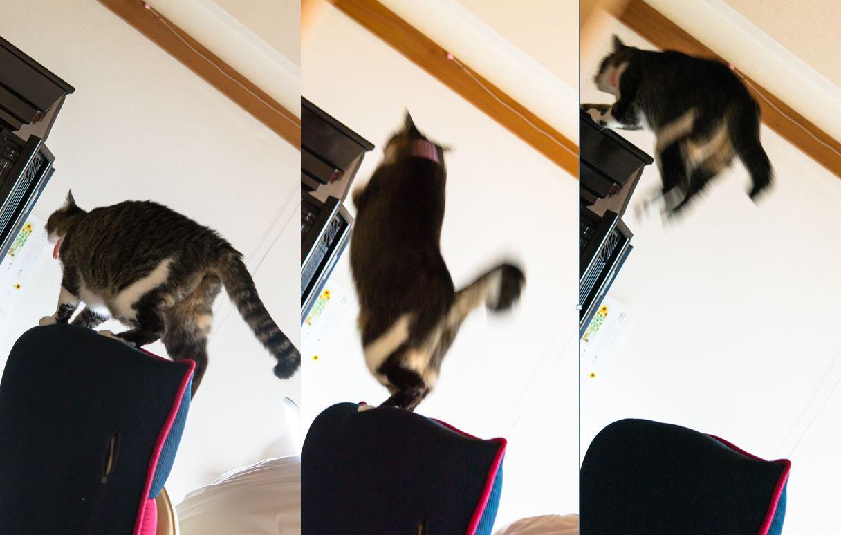 ルーズスキン:ジャンプで皮が伸びきらない
